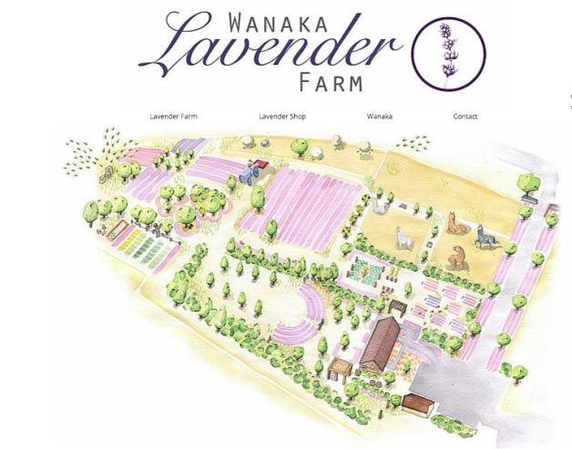 lavander farm small