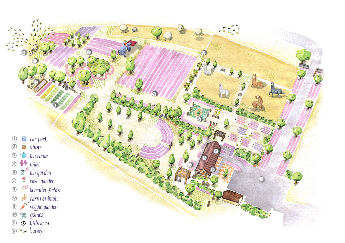lavender farm map