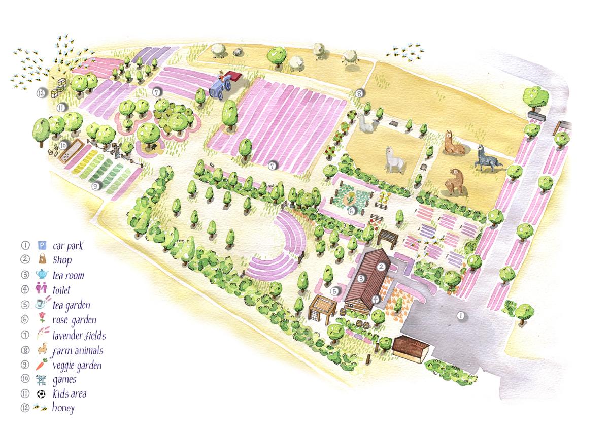 lavender farm map