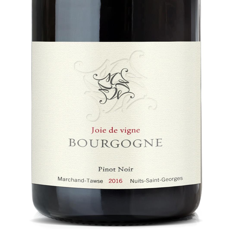 Red Burgundy Bottle
